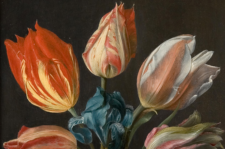 Detail from Georg Flegel's Tulips, Iris and Other Flowers in a Sculpted Urn, three red, pink and white variegated tulips stand abpve a blue iris against a warm dark background