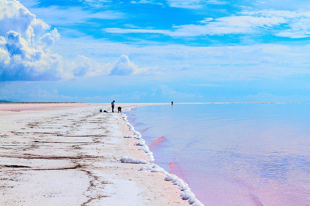 Pink Water at Rozell Point by Adelaide Ryder 2018. With Spiral Jetty out of view the shore line arches into the pink water the sky blends into the water.