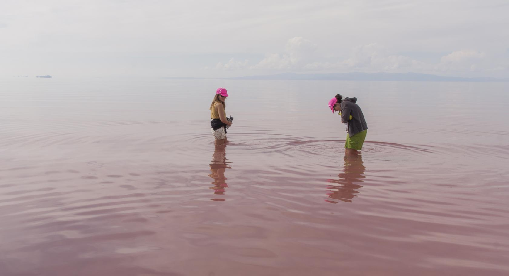 Spiral Jetty Meet-up 2015